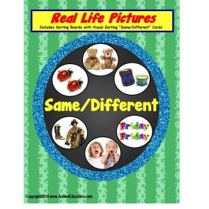 Autism SAME/DIFFERENT Sorting Board with Real-Life Pictures