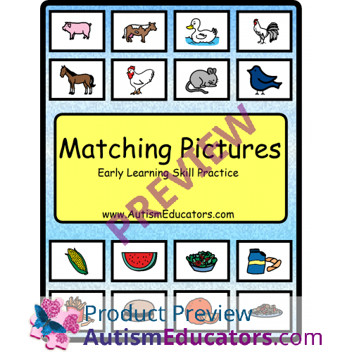 Matching Pictures Early Learning Skills