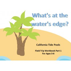 What's at the Water's Edge: California Tide Pools