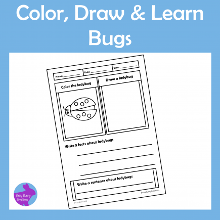 Color, Draw & Learn Bugs Insects