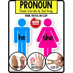 PRONOUNS Task Cards HE and SHE for Autism TASK BOX FILLER