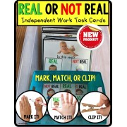 Is it REAL or NOT REAL Task Cards TASK BOX FILLER