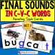 "FINAL LETTER SOUNDS in C-V-C Words TASK CARDS ""Task Box Filler"" for Autism"