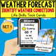 "TYPES OF WEATHER Forecast Task Cards ""Task Box Filler"" for Autism"