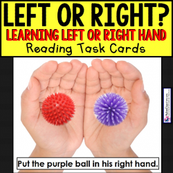 LEFT OR RIGHT HAND Task Cards for Autism TASK BOX FILLER
