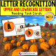 "LETTER RECOGNITION TASK CARDS Pumpkin Theme ""Task Box Filler"" for Autism"