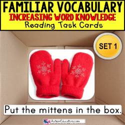 VOCABULARY and PICTURES Task Cards WORD KNOWLEDGE Task Box Filler for Autism SET 1
