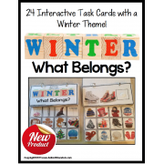 "WINTER Activity Book ""What Belongs?"""