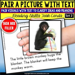 "PAIRING A PICTURE with TEXT to Match Key Details Task Cards ""Task Box Filler"" #2"