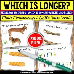 Long or Short Visual Measurement Task Cards TASK BOX FILLER