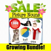 Picture Nouns for Vocabulary and Language Development GROWING BUNDLE