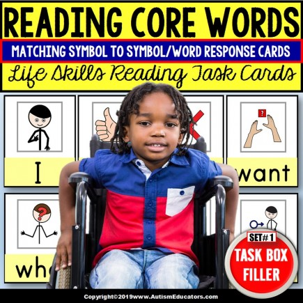 READING FUNCTIONAL CORE WORDS Task Cards TASK BOX FILLER Special Education SET 1