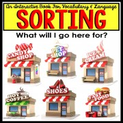 SORTING By Category Interactive Book ASSOCIATIONS with LOCATION for Autism
