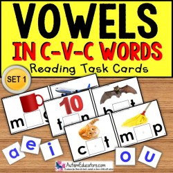VOWELS in C-V-C Words Task Cards TASK BOX FILLER