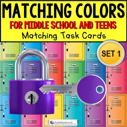 MATCHING COLORS TASK CARDS Age Appropriate for Middle School and Teens TASK BOX FILLER