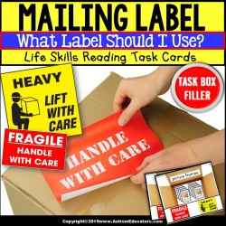 Is it HEAVY or FRAGILE Task Box Filler TASK CARDS
