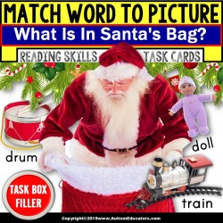 "Matching Nouns with Pictures Task Cards SANTA'S BAG ""Task Box Filler"" for Autism"