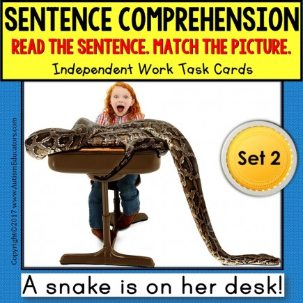 SENTENCE COMPREHENSION Reading Task Cards SET 2 TASK BOX FILLER