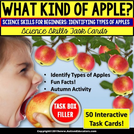 """APPLE Activities MATCHING and READING COMPREHENSION Task Cards """"Task Box Filler"""""""