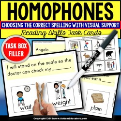 HOMOPHONES Task Cards with Visual Support Task Box Filler for Special Education