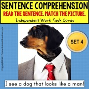 SENTENCE COMPREHENSION Identifying VISUAL ABSURDITIES Task Cards TASK BOX FILLER