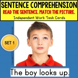 SENTENCE COMPREHENSION Task Cards for Autism and Special Needs Students TASK BOX FILLER