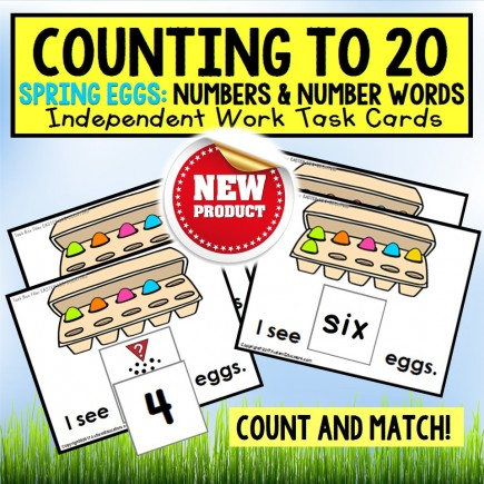 One To One Correspondence Count To 20 SPRING EGG Task Cards TASK BOX FILLER
