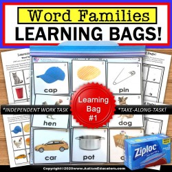 WORD FAMILIES Learning Bag for Special Education and Reading Intervention SET#1
