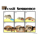 Fossil Formation Sequence