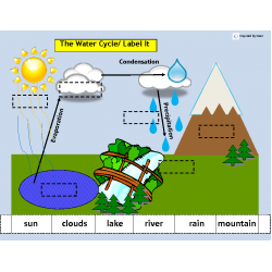 The Water Cycle: Match, Sort, & Sequence