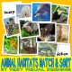 ANIMAL HABITATS MATCH & SORT with 150 Picture Cards: autism aba speech therapy pecs