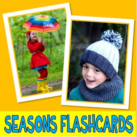 SEASONS PHOTO FLASHCARDS weather autism aba speech therapy pecs activity