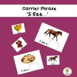 Basic Carrier Phrase - I See