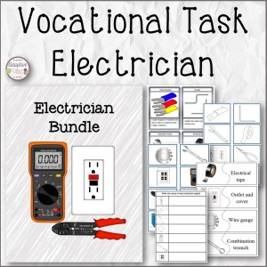 Vocational Task Electrician