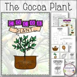 The Cocoa Plant