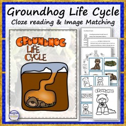 Groundhog Life Cycle Cloze Reading and Matching
