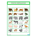 Animals Match, Count, Sequence FREEBIE