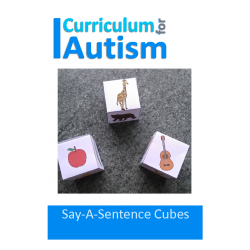 Say A Sentence Cubes with Visual Prompts