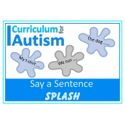 Say a Sentence 'Splash' Flashcards