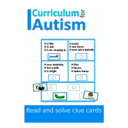 Reading Comprehension Vocabulary Clue Cards