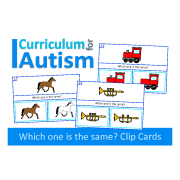 Which One Is The Same? Visual Thinking Clip Cards