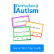 Reading Skills Yes or No Clip Cards for Autism & Special Needs