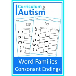 Word Families Consonant Endings Worksheets