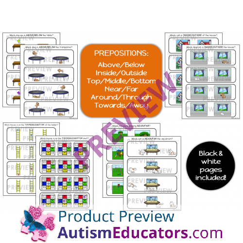 Prepositions NO PREP Worksheets