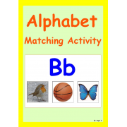 Alphabet Matching Activity (Alphabet Book)