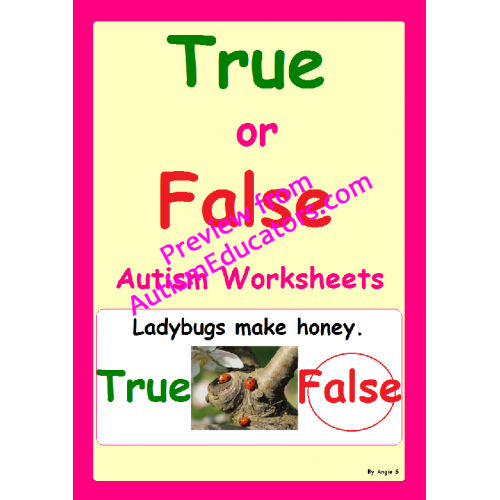 True Or False Autism Worksheets