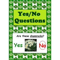 Saint Patrick`s Day Yes/No Questions