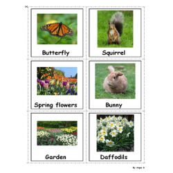 Spring Photo Flash Cards