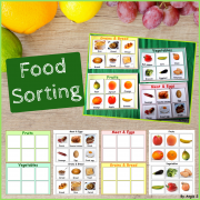 Food Sorting Activity