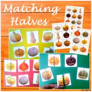 Pumpkins Matching Activity